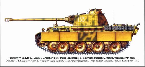 116panther1