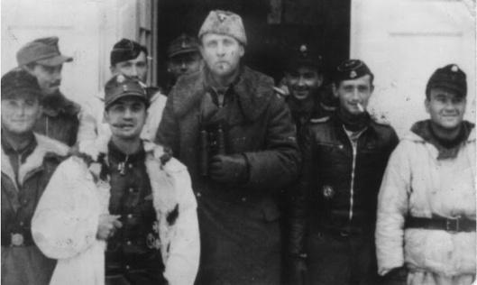 Willi Hein Karl-Heinz Lichte Fritz Vogt Darges Wiking Hungary 1945 castle panzer officers