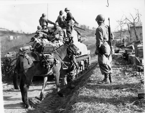10th_Mountain_Division-advancing_in_April_1945