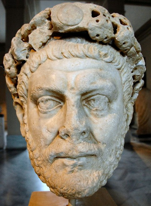 reforms diocletian Start studying the reforms of diocletian and constantine learn vocabulary, terms, and more with flashcards, games, and other study tools.