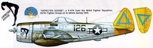 art-republic-p-47n-thunderbolt-20af-507fg463fs-126-le-shima-1945-0a